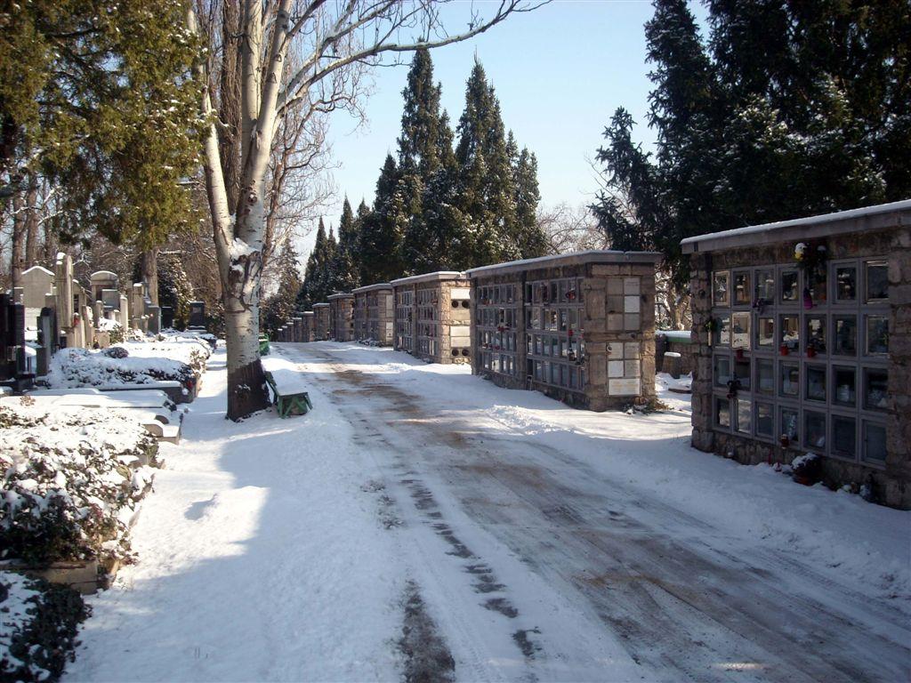 hřbitov sníh