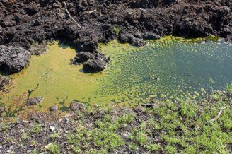 kontaminace půda zemědělství - IMG_5658