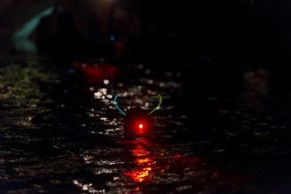 otužilci - Vltava světla