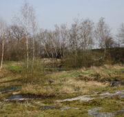 přírodní památka - jezírko - IMG_1355
