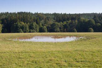 půda zemědělství pole - IMG_5556