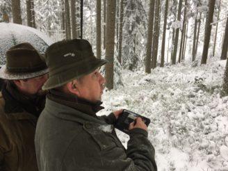 Lesy ČR - posuzování hodnoty stromů