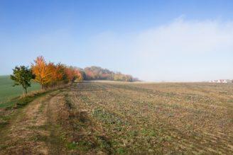 krajina podzim - IMG_8266