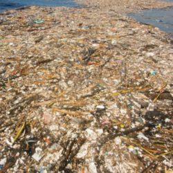 moře znečištění Honduras