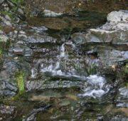 potok krajina