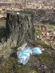 skládka plast pařez - Tato ozdoba zůstane v lese 50-80 let