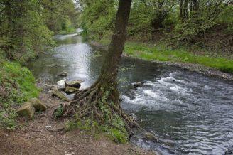 Dřevnice řeka Zlín - IMG_7136