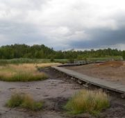 Soos_Landscape_0B
