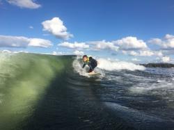 surfaři osel antibiotika