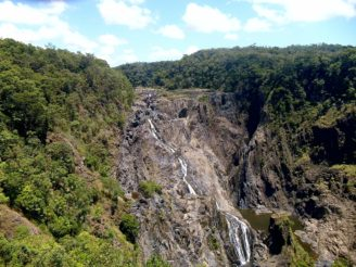 Deštný prales Austrálie