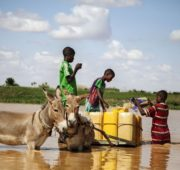 UNICEF voda děti
