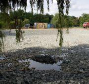 Stromovka revitalizace rybníky - IMG_5284_-_kopie