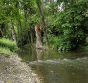 potok Botič
