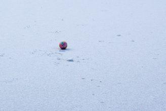 sníh míč - IMG_0744