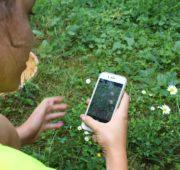 aplikace Veolia květiny 1- IMG_6873