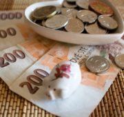 peníze - IMG_7052_-_kopie