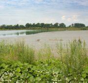 Tovačovská jezera - IMG_8314