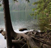 Čertovo jezero Šumava