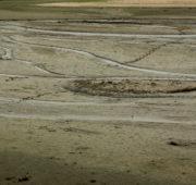 sucho vypuštěný rybník - IMG_5330