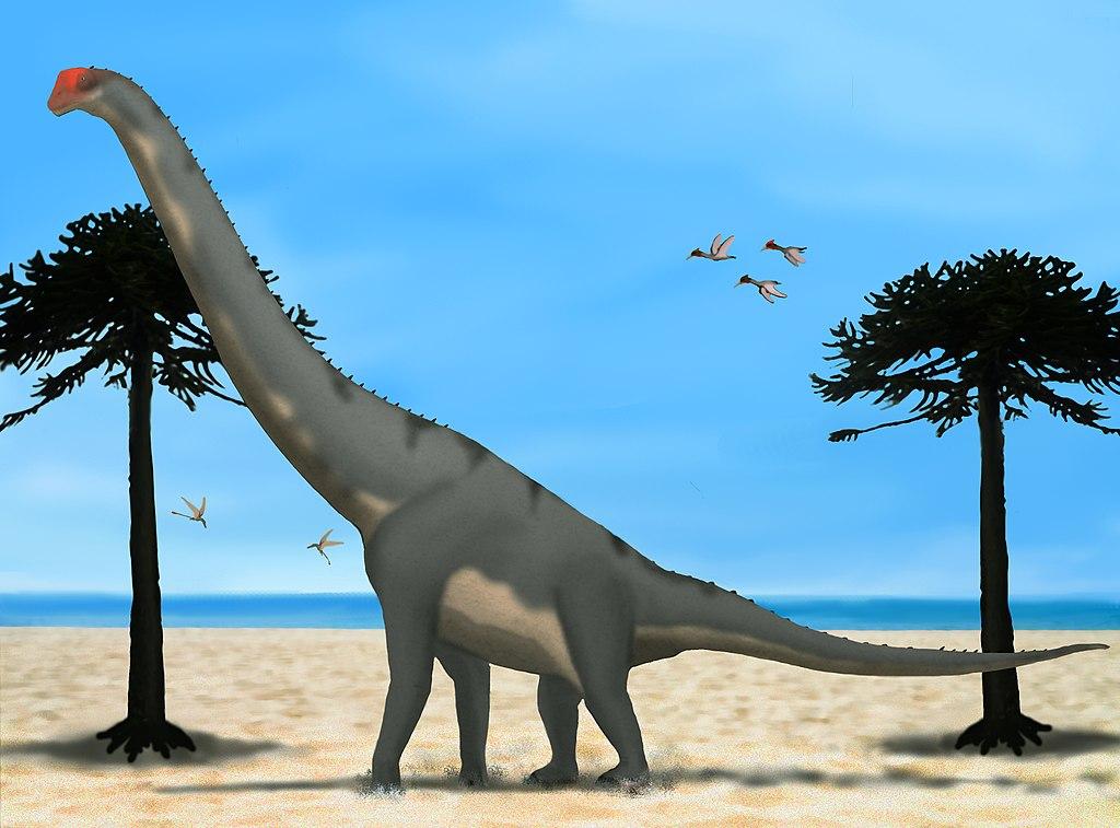 fosilních fosilních dinosaurů seznamka zdarma v san francisco
